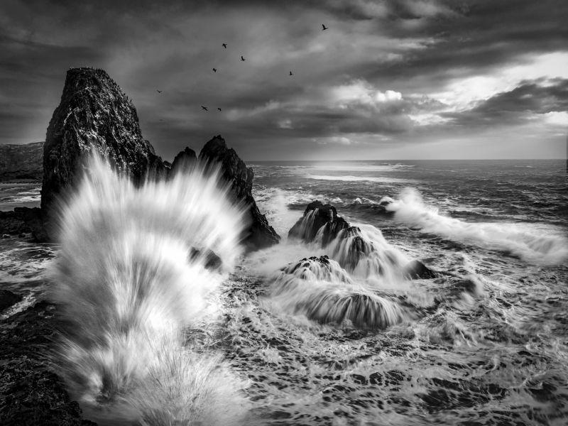 Waves, Hunter  Gary , Usa