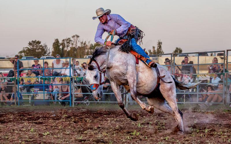 Ride Em Cowboy, Walker  Helen , Australia