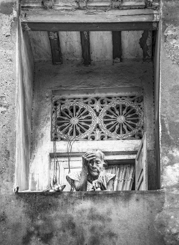 ASOHAY, Bose  Sumit , India