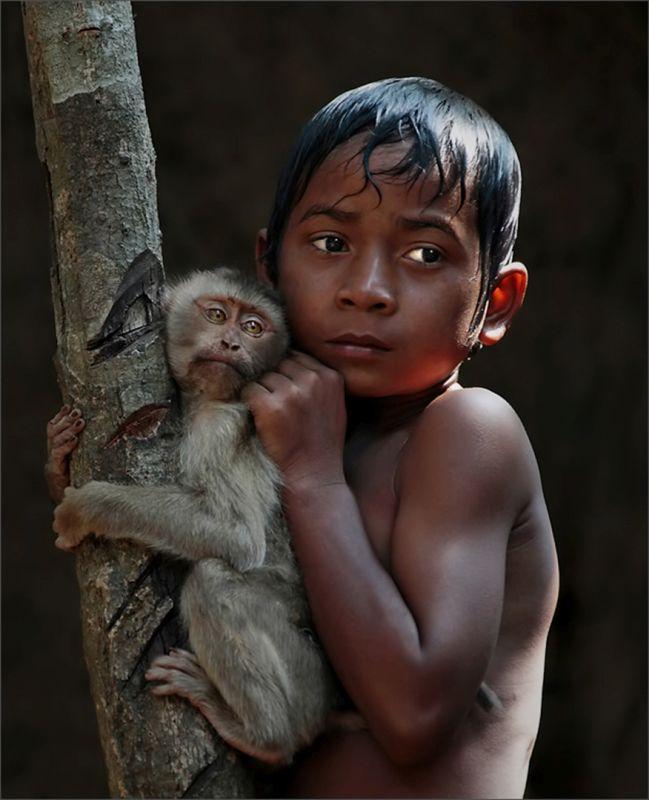 Jungle Life, Tran  Michael , Usa
