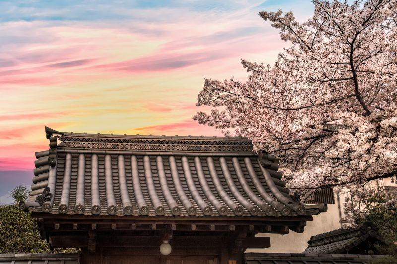Peaceful Morning, Tran  Yen , Usa