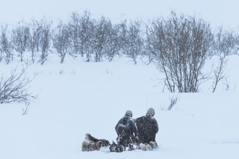 The Nenets29, Ye  Danlei , Canada