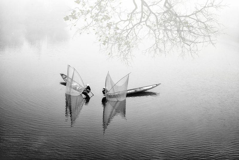 The River, Nguyen  Minh , Usa