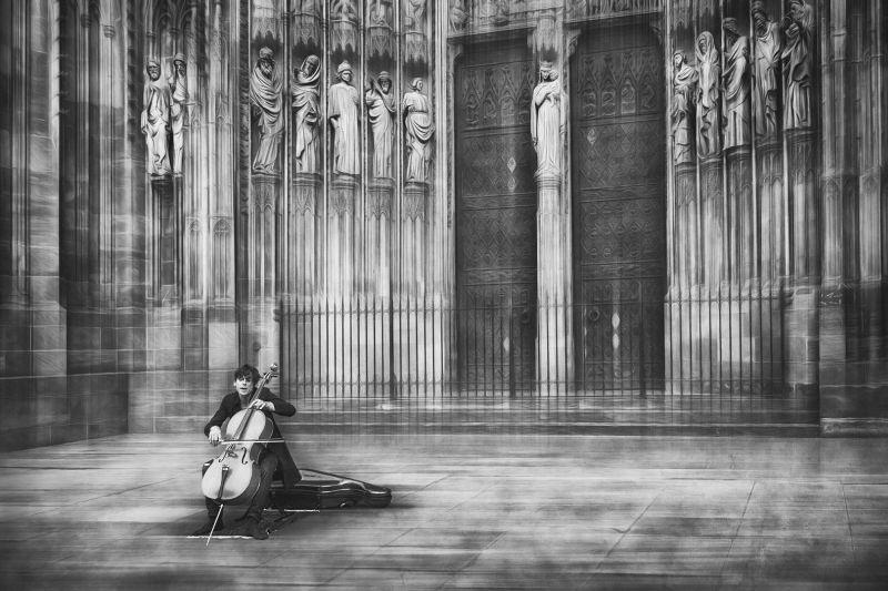 The Cellist, Schleicher-schwarz  Roswitha , Germany