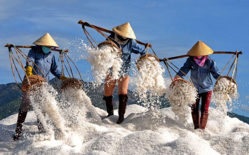 Salt Worker 2, Tran  Phong , Vietnam