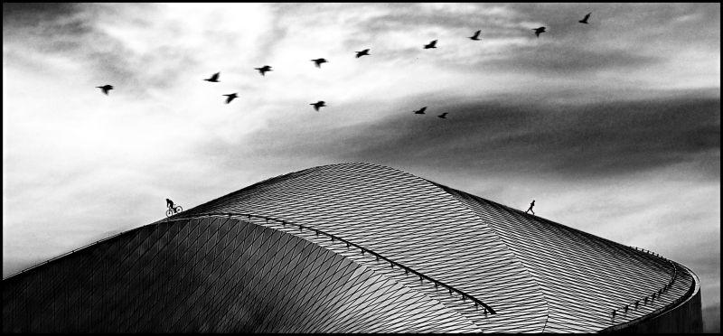 Roof Sport, Suszkiewicz  Ole , Denmark