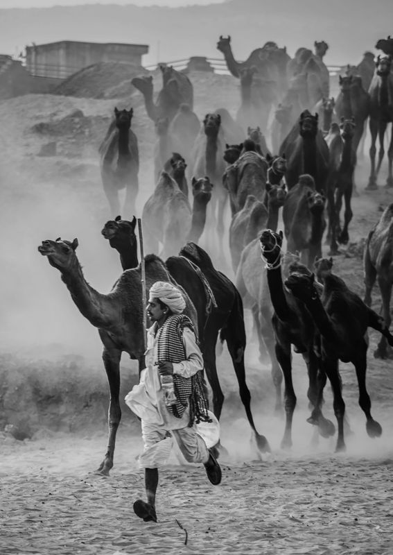 Keep Moving In All Conditions, Kalla  Vivek , India
