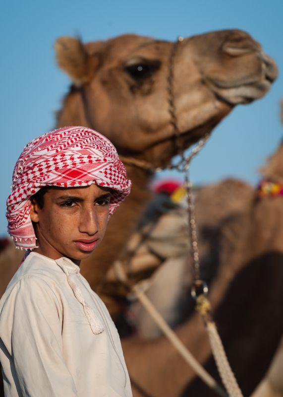 Camel Boy 3, Sengupta  Sanjoy , India