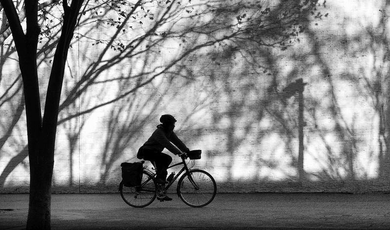 Street Rider, Bassett  David , Australia