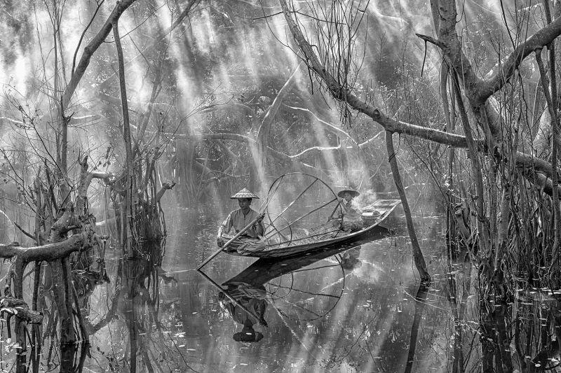 Among The Mangroves 03, Htet  Hein , Singapore