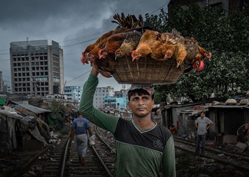 Head Skill, Wang  Hongshan , China