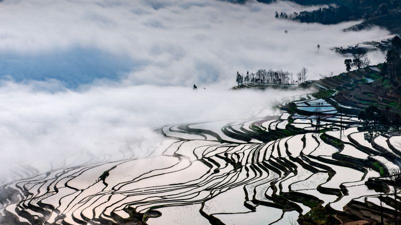 Misty Yuanyang Terrace, Deng  Shugang , China