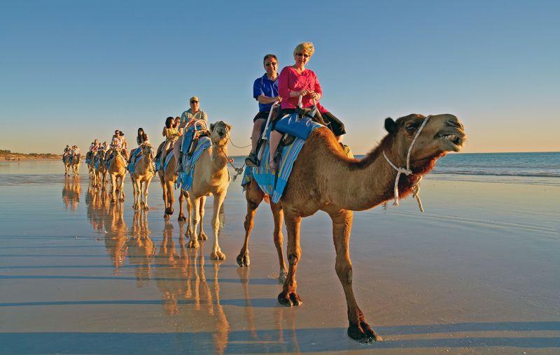 Golden Hour Camel Parade, Cheung  Sinkai , Australia
