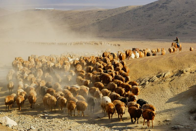 Great Migration, Sui  Banglun , China