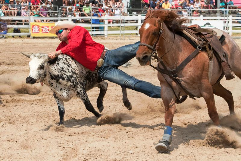 Steer Wrestling S008, Lee  Peter , Canada