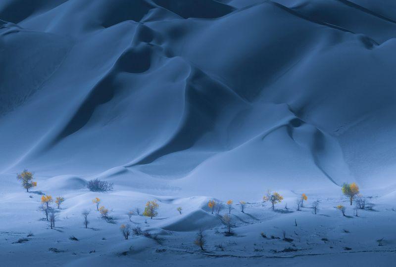 Autumn In The Snowfield, Kuai  Zhengdong , China