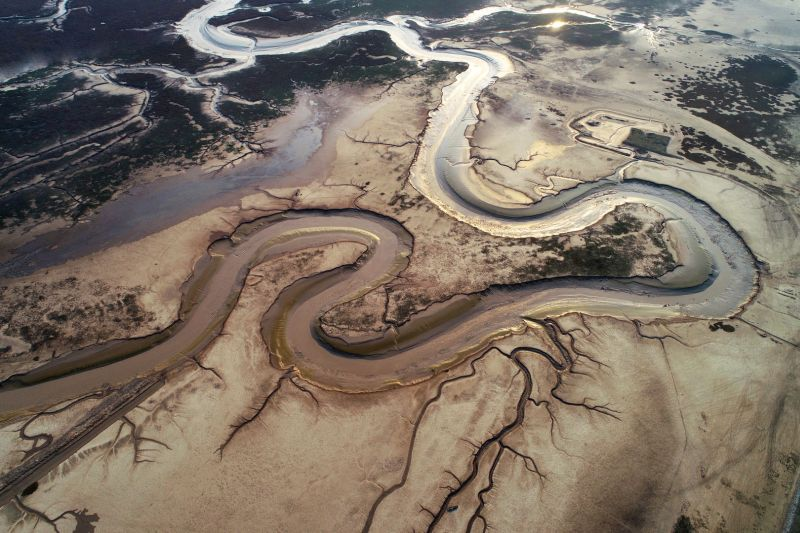 Sinuous Dragon In Wetland, Yang  Guomei , China