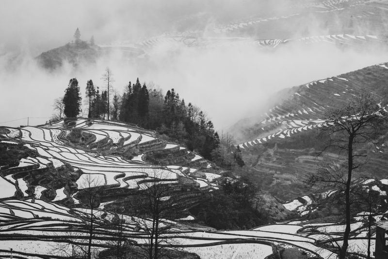 Terraces In The Clouds, Xu  Jinan , China